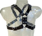 Leather Y-Front Harness